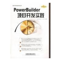 PowerBuilder项目开发实践