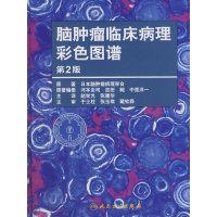脑肿瘤临床病理彩色图谱(翻译版)