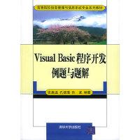 Visual Basic 程序开发例题与题解——高等院校信息管理与信息系统专业系列教材