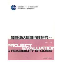 项目评估与可行性研究(第2版)