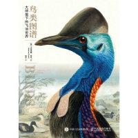 鸟类图谱 大师笔下的飞羽世界