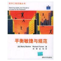 平衡敏捷与规范——软件工程实践丛书