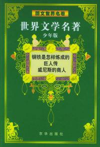 世界文学名著(少年版):图文世界名著(共12册)