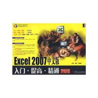 Excel 2007中文版入门·提高·精通