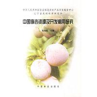 中国李杏资源及开发利用研究