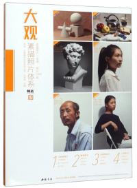 大观素描照片体系/师语主题教学大观系列丛书