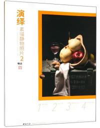 演绎:素描静物照片2/师语主题教学演绎系列丛书