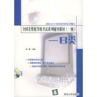 全国计算机等级考试系列辅导教材 (一级) --B类 (含盘)