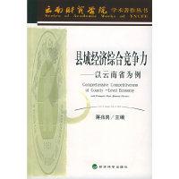 县域经济综合竞争力:以云南省为例——云南财贸学院学术著作丛书