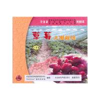 草莓大棚栽培(VCD)