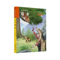 动物小说大王沈石溪 致敬生命书系:狼妻