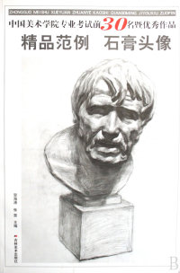 精品范例 石膏头像/中国美术学院专业考试前30名暨优秀作品