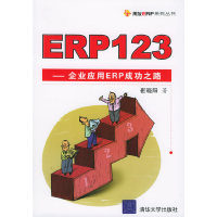 ERP123:企业应用ERP成功之路