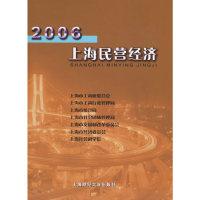 2006上海民营经济