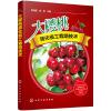 大樱桃简化省工栽培技术