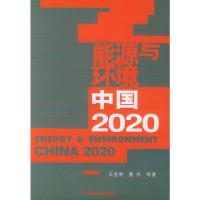 能源与环境:中国 2020