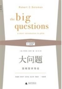 大问题:简明哲学导论(第三版)