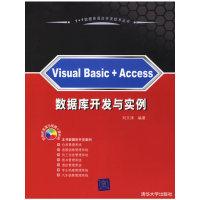 Visual Basic+Access数据库开发与实例