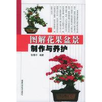 图解花果盆景制作与养护