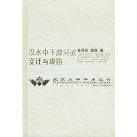 汉水中下游河道变迁与堤防——武汉大学学术丛书