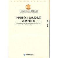 中国社会主义现代化的道路和前景