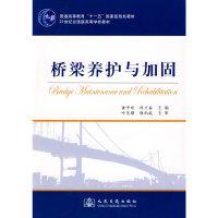 桥梁养护与加固