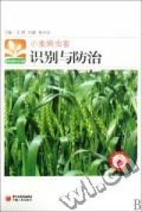 小麦病虫害识别与防治