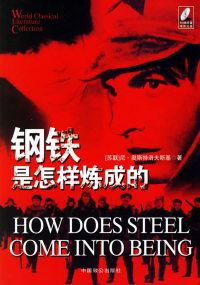 钢铁是怎样炼成的(附光盘一张)永久记忆版世界文学名著文库