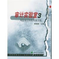 审计实验室3——风险审计的技术和方法(审计实验室系列丛书)