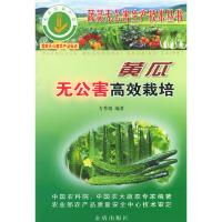 黄瓜无公害高效栽培——蔬菜无公害生产技术丛书