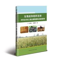 生物炭和秸秆还田对华北农田土壤主要氮循环过程的影响