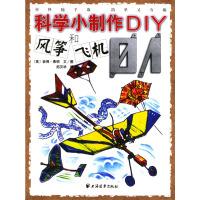 风筝和飞机.1——科学小制作DIY