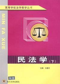 民法学(上下)