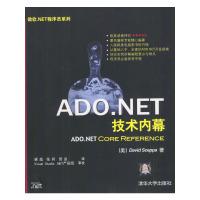 ADO.NET技术内幕/微软.NET程序员系列