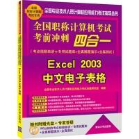 全国职称计算机考试考前冲刺四合一(考点视频串讲+专用试题库+全真解题演示+全真测试)——Excel 2003中文