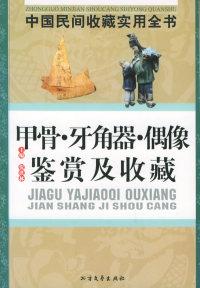 甲骨·牙角器·偶像鉴赏及收藏:中国民间收藏实用全书
