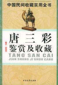 唐三彩鉴赏及收藏:中国民间收藏实用全书