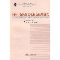 中国少数民族文化权益保障研究