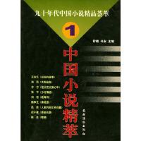 九十年代中国小说精品荟萃(1)