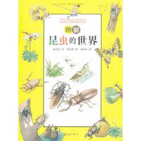 图解昆虫的世界(我的第一堂科学知识课系列1)(适合7-14岁阅读)(韩国文化部寒暑假推荐读物,韩国最受欢迎的儿童科普书,汇集数百幅精细插画和逗趣对白,用讲故事的方式讲科学!)