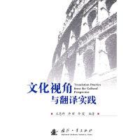 文化视角与翻译实践