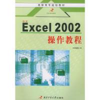 中文Excel2002操作教程/高职高专规划教材