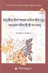 札记如意宝与精神金刚石:藏文
