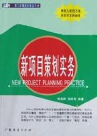 新项目策划实务