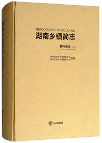 湖南乡镇简志(郴州市卷 上册)