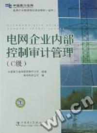 电网企业内部控制审计管理:C级
