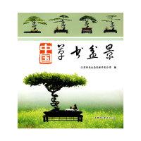 中国草书盆景
