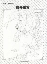 花卉速写——现代工笔画技法