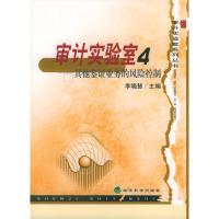 审计实验室4——其他鉴证业务的风险控制(审计实验室系列丛书)