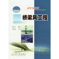 桥梁风工程(21世纪交通版高等学校教材)